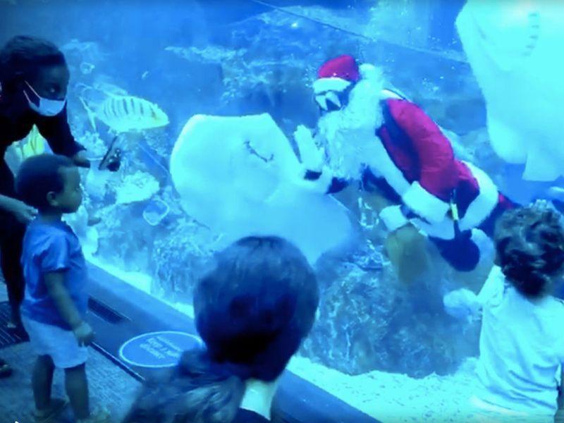 Santa diver