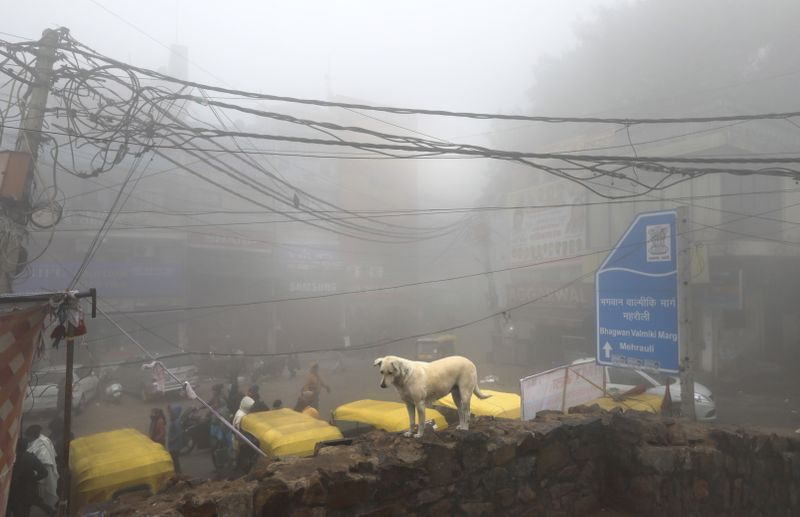 Copy of India_Weather_12776.jpg-1584b-1577694216572