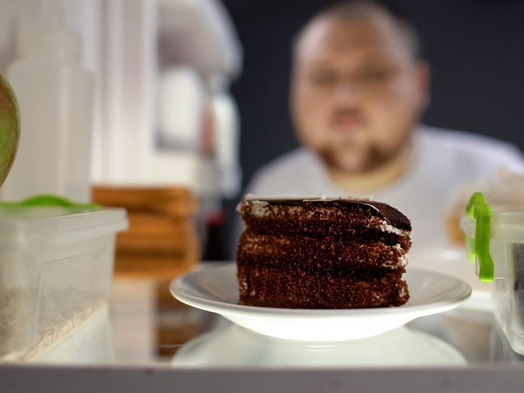 Dubai Health Authority Food Addiction