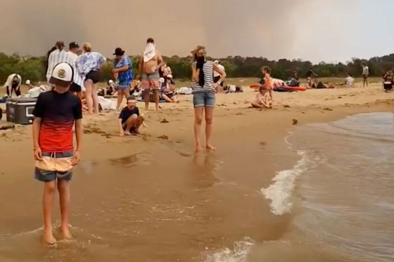 A crowd of people at the beach evacuate from the bushfires at Batemans Bay, Australia