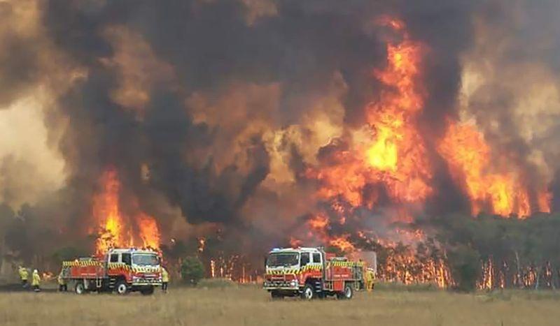 Copy of Australia_Wildfires_50566.jpg-bac0a-1577791178736