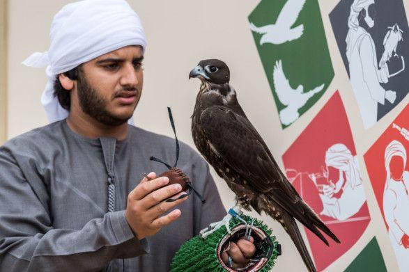 Rashid Al Marri-1610170048440