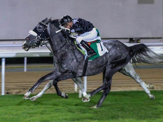 Horse-Af Majalis