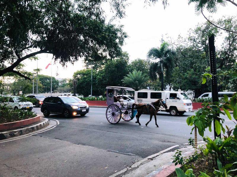 Manila scenes