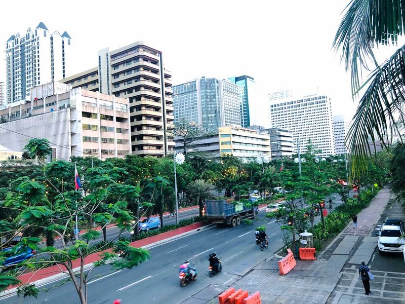 Trees line streets in Manila. A scene on the Roxas Boulevard