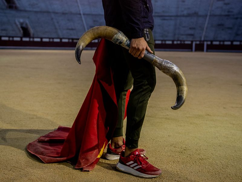 Bullfighting school gallery