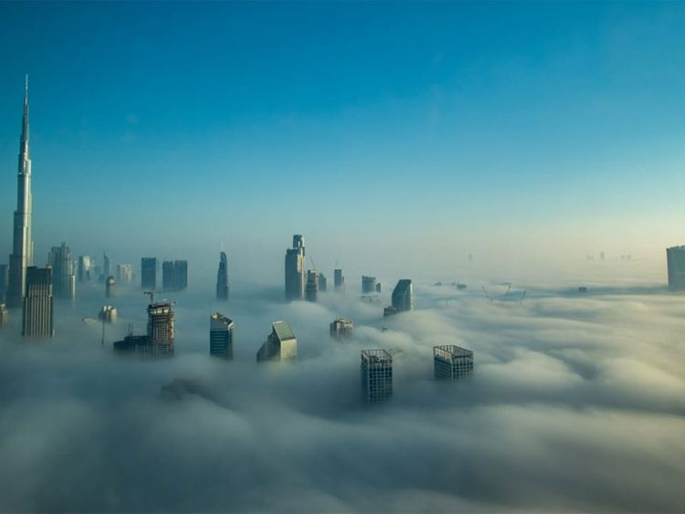 Dubai Fog Reader picture