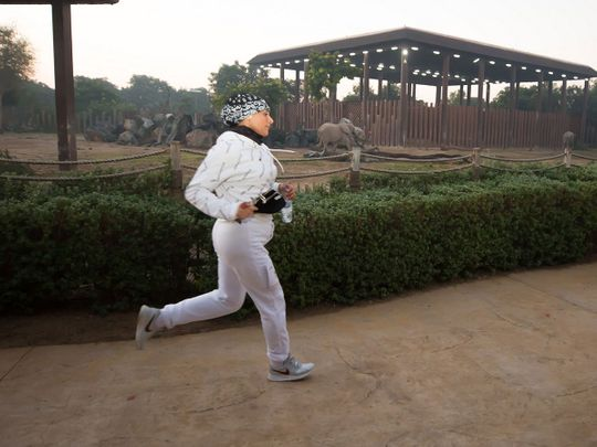 The Dubai Women's Running Challenge, which attracted more than 300 enthusiasts, took competitors past exotic animals at Dubai Safari Park,