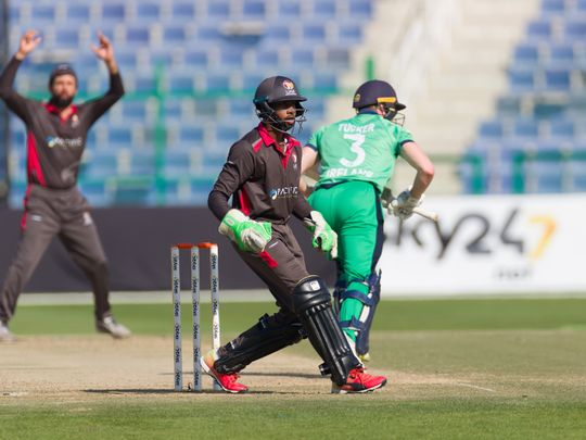 Ireland racked up 228 for the loss of six wickets in the final ODI against the UAE.