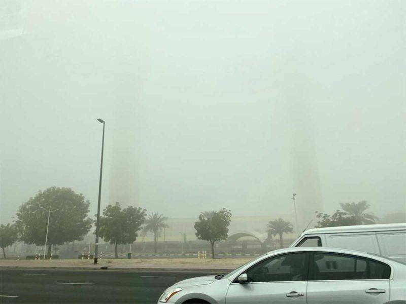 20210119 fog