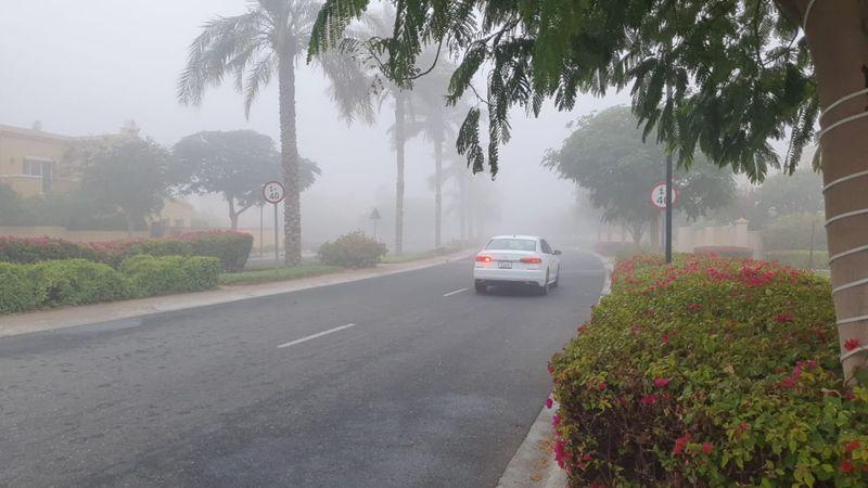 Monster fog in Dubai