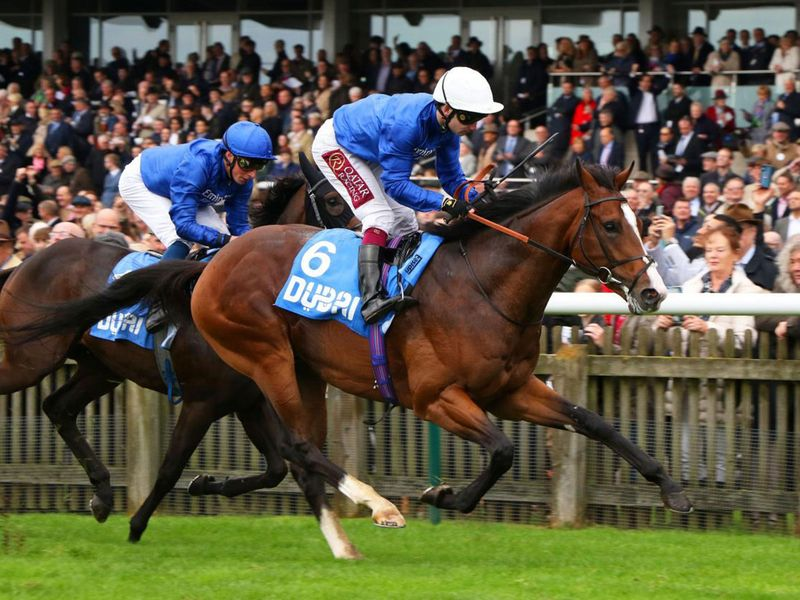 Godolphin's Military March looks to lay down a big race marker in the Singspiel Stakes