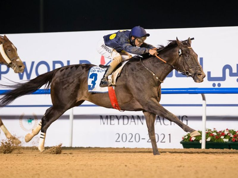 Important Mission is a leading contender in the Al Furjan By Azizi Handicap, the opening race of the 2021 Carnival