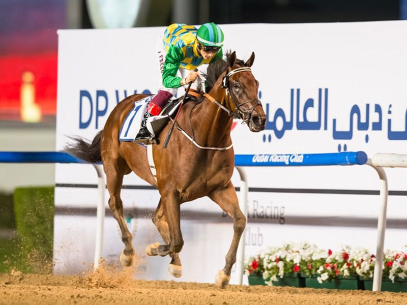 Trainer Musebeh Al Muhairi feels Military Law can win the Al Maktoum Challenge