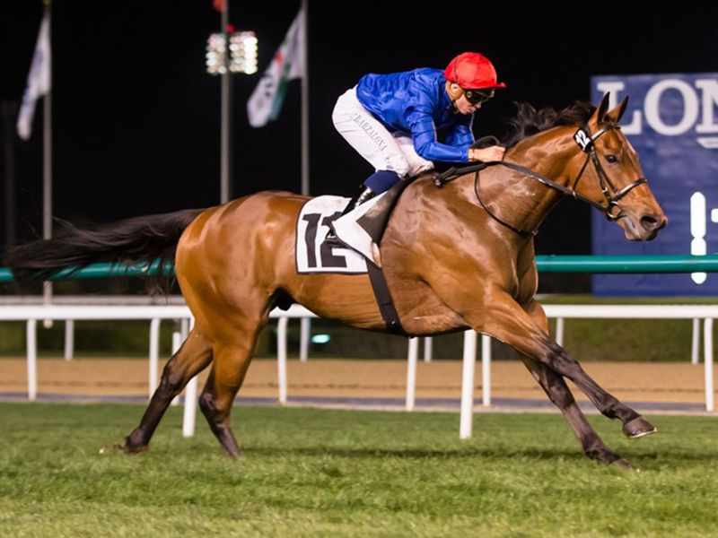 Velorum looks a leading contender in the Al Fahidi Fort