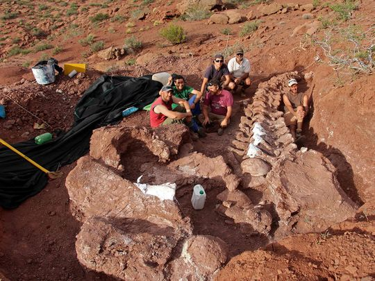 Palaeontologists