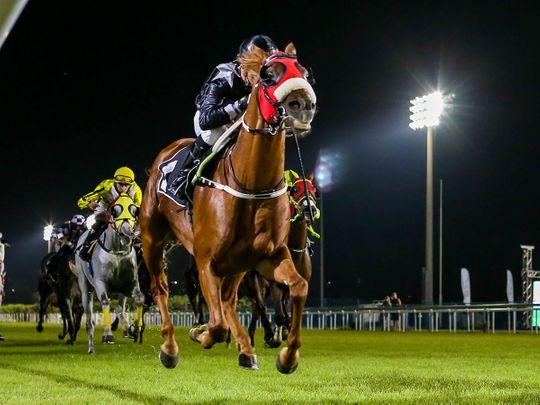 AF Alwajel winning the 2020 Sheikh Zayed bin Sultan Al Nahyan National Day Cup at Abu Dhabi under champion jockey Tadhg O'Shea.
