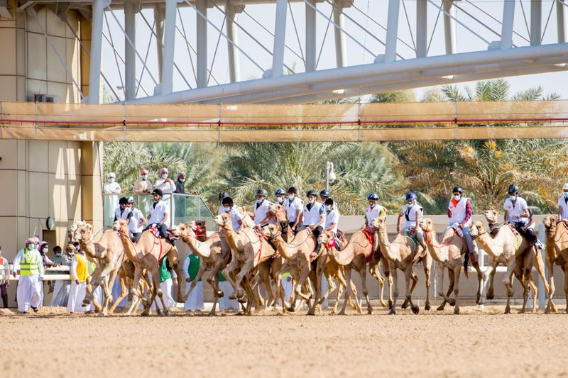 CAMEL 1-1611482468190