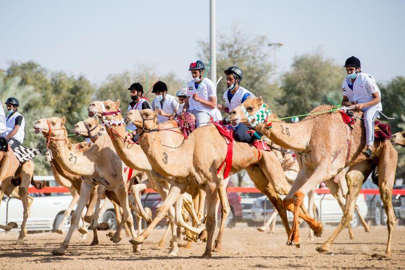 CAMEL 5-1611482481046