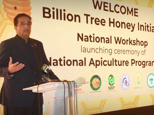 Special Assistant to Prime Minister on Climate Change, Malik Amin Aslam, beekeeping