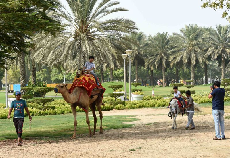 50 Things to do in UAE for Dh50 or less