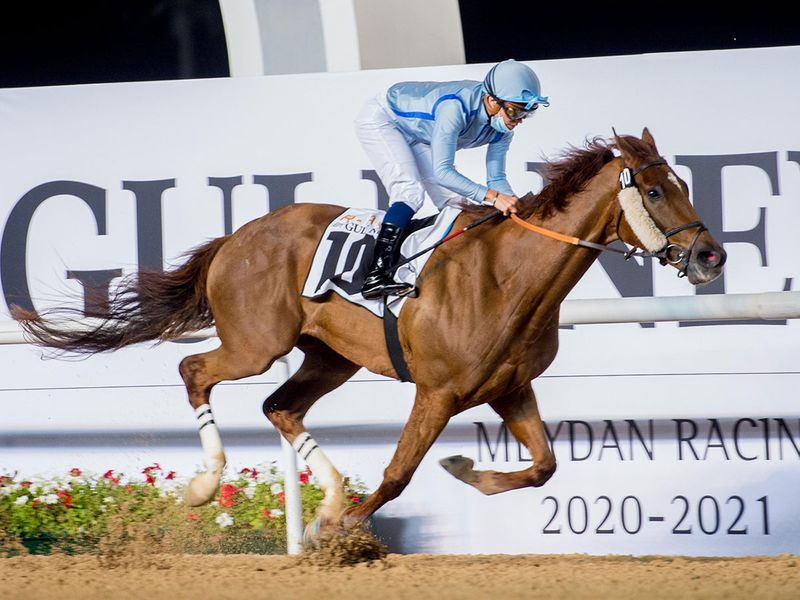 Book Review wins the REACH By Gulf News Handicap at Meydan