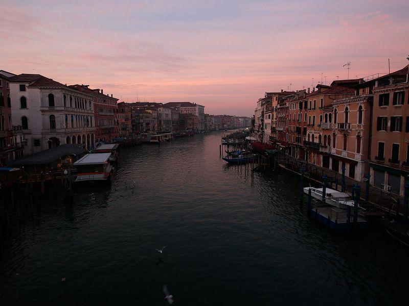 Venice carnival gallery
