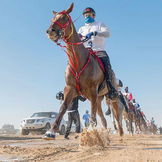Sheikh Hamdan bin Mohammad Al Maktoum, the Crown Prince of Dubai