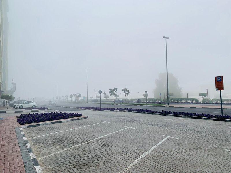 20210210 fog images