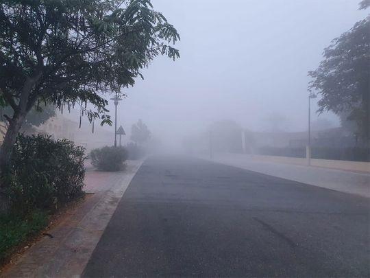 Fog teaser