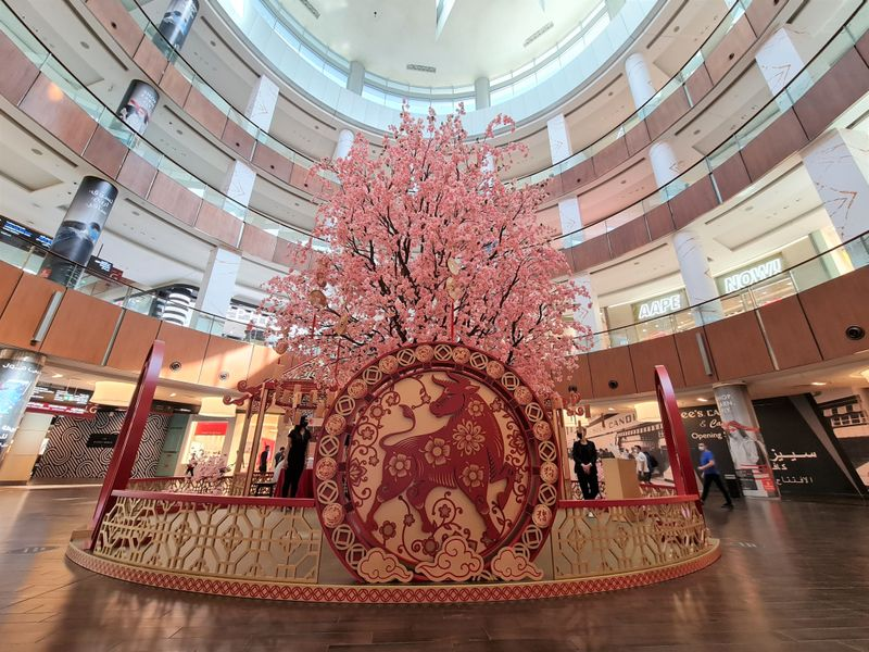 Dubai Mall Chinese New Year