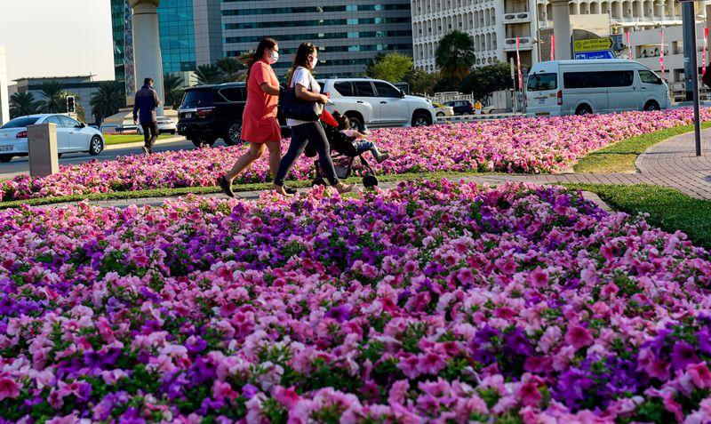 FLOWER 1-1613043544172