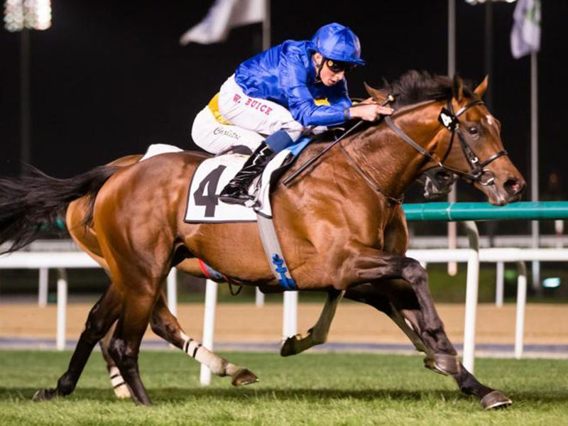 Godolphin's Well of Wisdom can end a big night for trainer Charlie Appleby at the Carnival on Thursday.