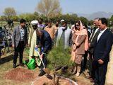 Australia's High Commissioner to Pakistan Dr Geoffrey Shaw Pakistan's Climate Change Minister Zartaj Gul Miyawaki forest