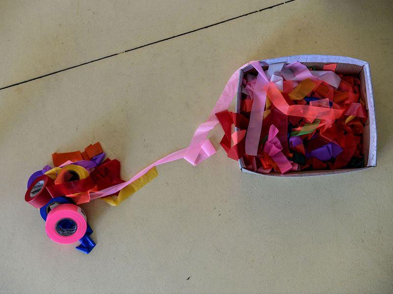 Florida ribbons gallery