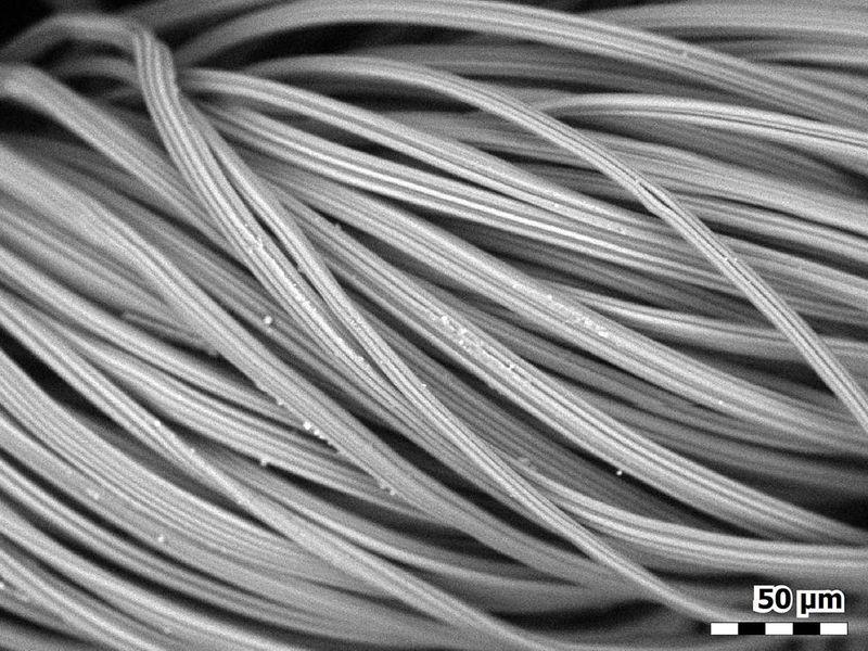 20210310 fibers