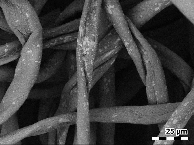 20210310 individual fibers