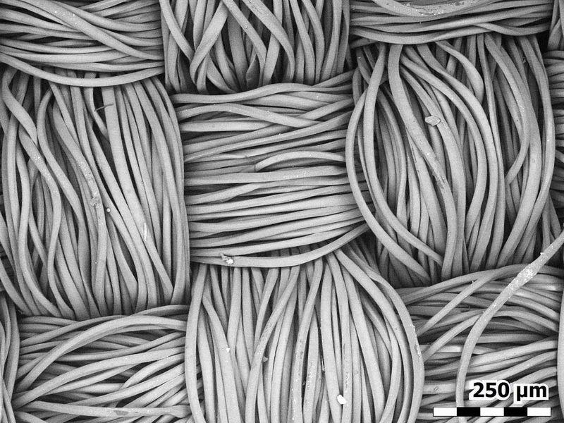 20210310 micro fibers 2