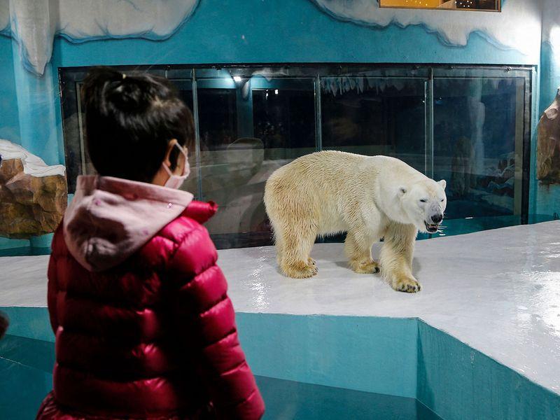 Bear hotel gallery