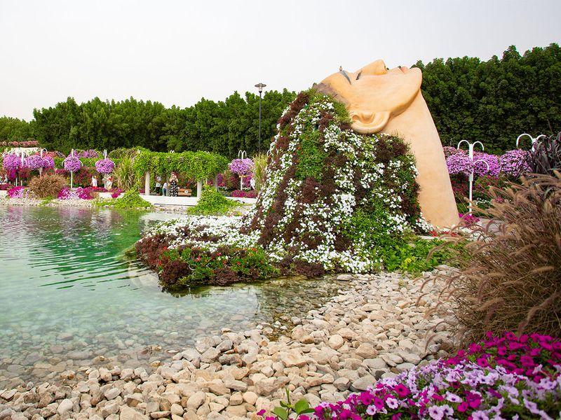 Miracle garden gallery