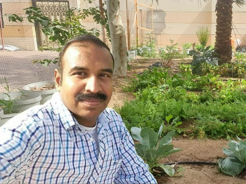 Vijayraghavan and his friend and colleague, Subash Krishnankutty Odatt, take care of this small farm in their Ajman villa in the last four years.