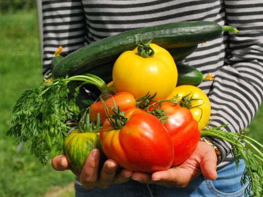 Kitchen gardens: Grow your own food at home