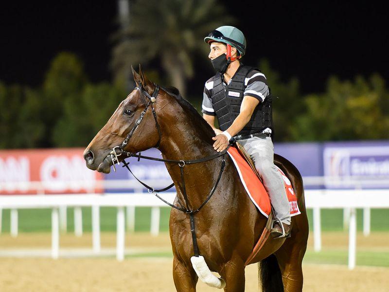 Ajuste Fiscal will contend in the Dubai World Cup