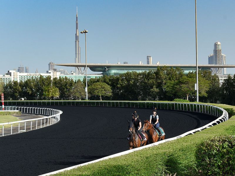 It was a perfect morning for a run out at Meydan ahead of the Dubai World Cup