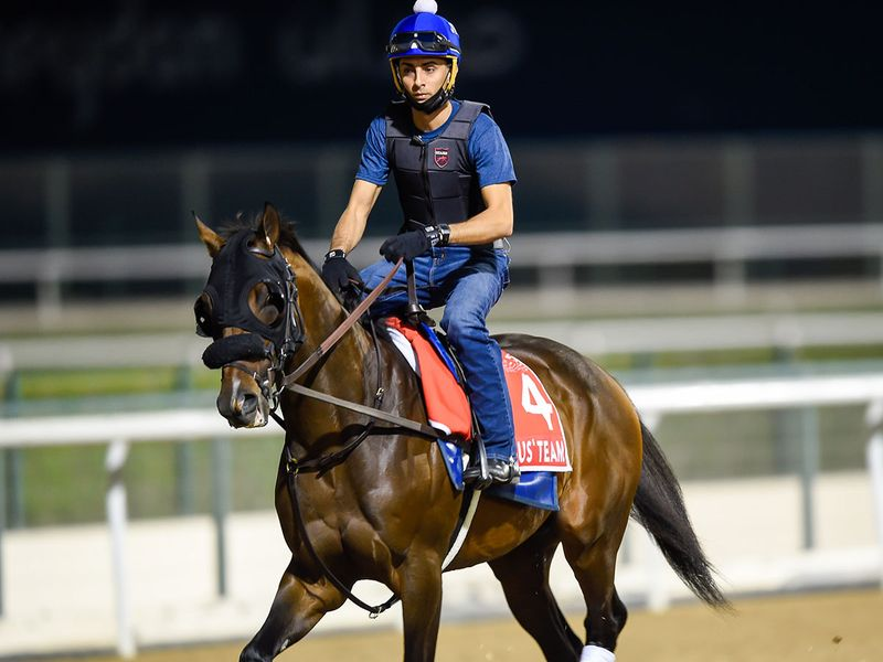 Magny Cours was out for a trot ahead of the Dubai World Cup