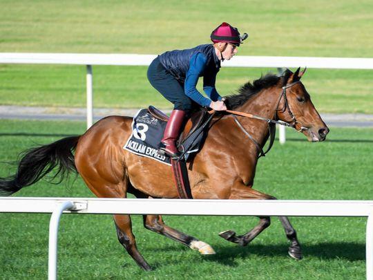 Horse racing - Acklam Express