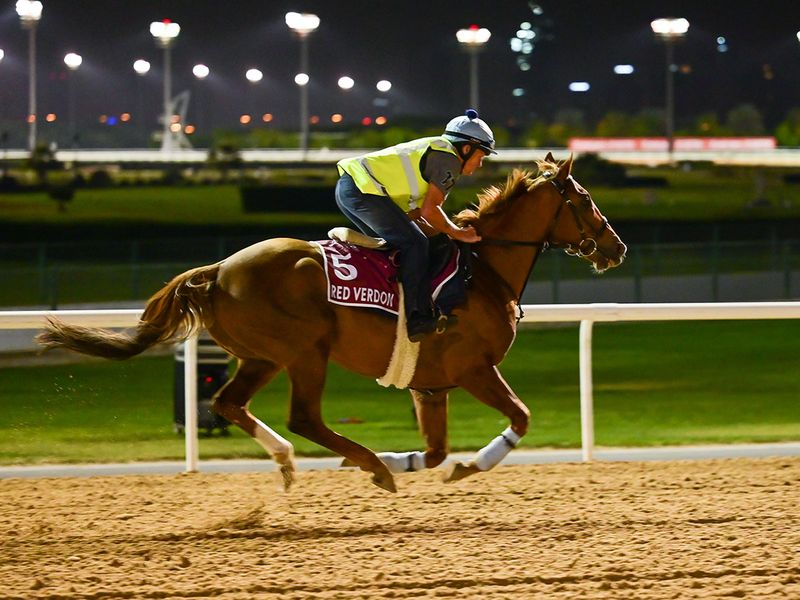 Red Verdon was flying as he warmed up for the Dubai Gold Cup