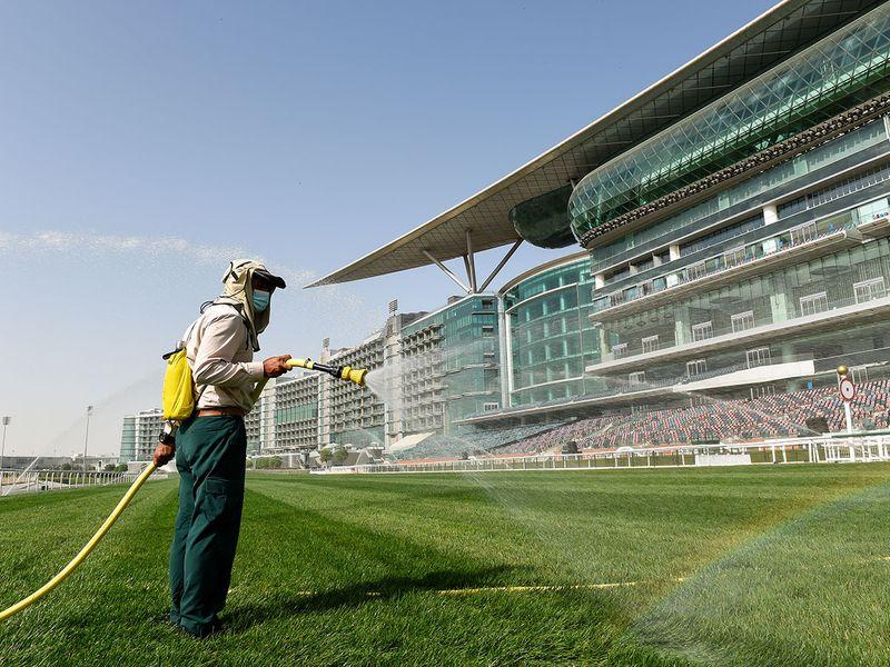 Meydan preparations for Dubai World Cup