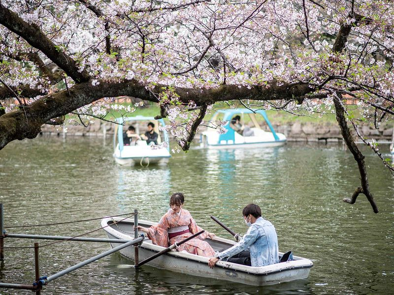 People ride boats watching cherry blossoms at Inokashira Park in Tokyo on March 30, 2021.