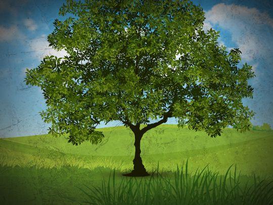 UAE tree environment